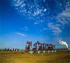 克拉玛依百里油田