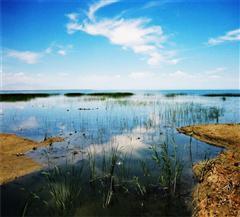 库尔勒博斯腾湖