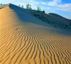 和田英尔力克沙漠