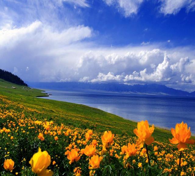 [那拉缇-巴音布鲁克-昭苏-阔克苏-赛湖5日]喀拉峻风景区阔克苏大峡谷