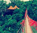 亚龙湾天堂森林公园