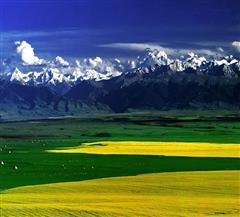喀尔肯特草原