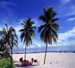 [曼谷-芭提雅-沙美岛自由行直飞8日]芭提雅泳池度假酒店|沙美岛足足游玩儿一天