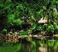 三亚呀诺达热带雨林
