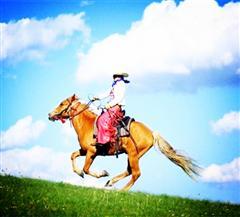 马背上的风采