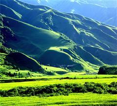 [喀纳斯-禾木-那拉提-巴音布鲁克深度7日]深度环游北疆|六大赠送