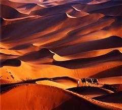 沙漠零公里