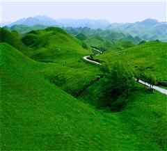 [南山牧场1日]天山怀抱中的优美牧场
