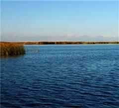 [罗布人村寨-博斯腾湖-克孜尔千佛洞双卧3日]赠送博湖长堤风景区|深入感受塔克拉玛干大沙漠的广阔
