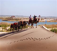 [喀什市内-达瓦昆沙漠双飞2日]含喀什往返机票|浩瀚大漠