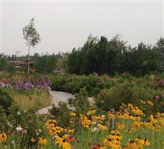 奇台侏罗纪公园