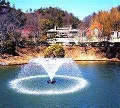 [日本-东京-名古屋-大阪-奈良-富士山双古都温泉8日]升级一晚温泉度假酒店|日式鱼船大餐
