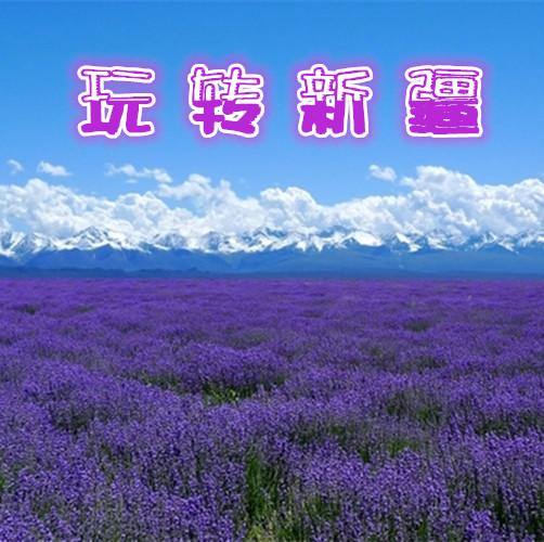 新疆全景游