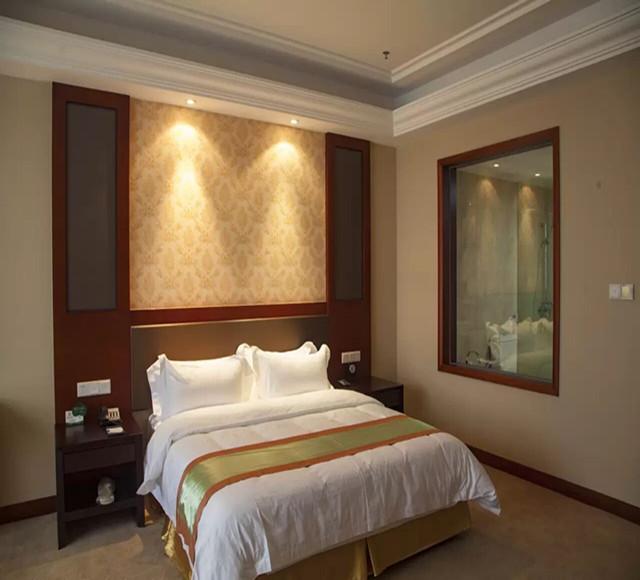 石河子恒和华星酒店大床房