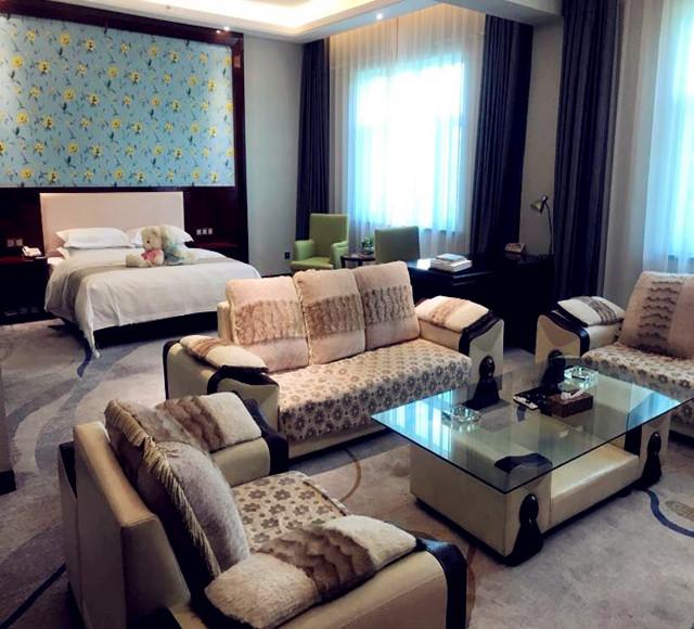 哈密加格达宾馆贵宾楼商务小套房2