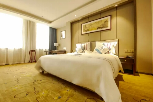 乌鲁木齐玄圃酒店普通大床房