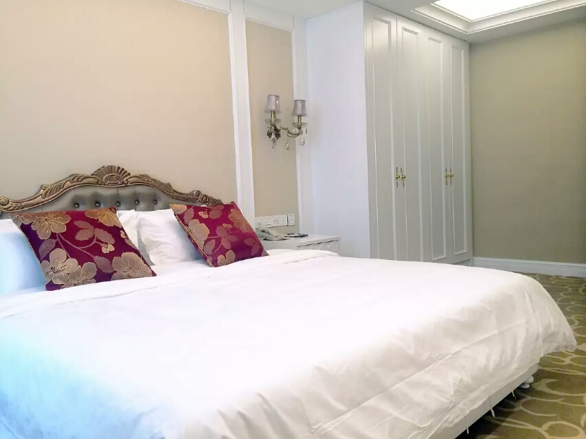 昌吉亚欧论坛国际专家公寓豪华单间套房