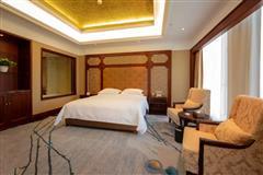 伊宁天缘国际酒店 豪华大床房