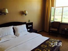 那拉提草原明珠大酒店 大床房