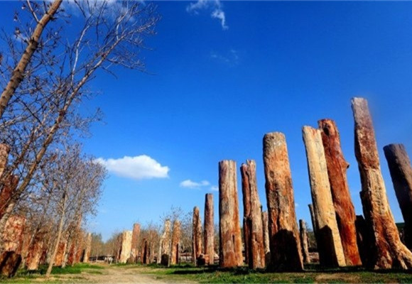 新疆古生态园旅游文化景区