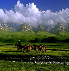 [天池-吐鲁番-喀纳斯-那拉提4卧7日]惠游新疆 品质之旅
