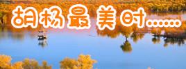最美胡杨旅游季